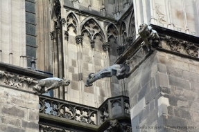 Cologne Cathedral: Gargoyles