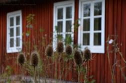 Röd Hus II