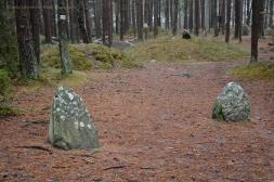 Archaeological site in Węsiory II