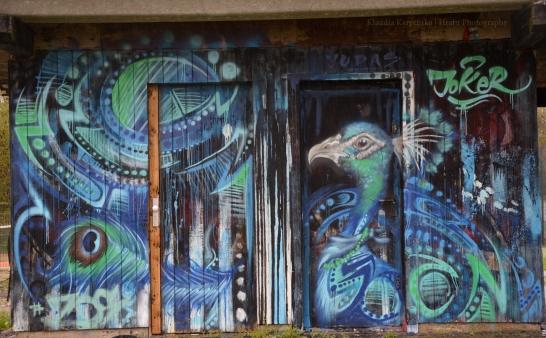 Peafowl Graffiti