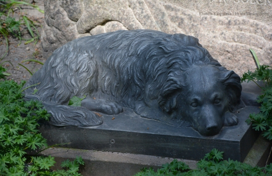 Faithful Dog Statue II