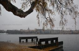 Autumnal landscape of Skeppsholmen