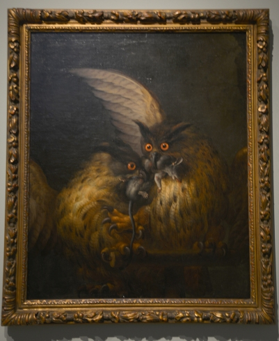 'Two owls fighting over a rat' by Hans Georg Müller