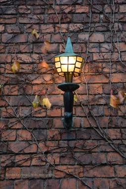 Lantern (II)