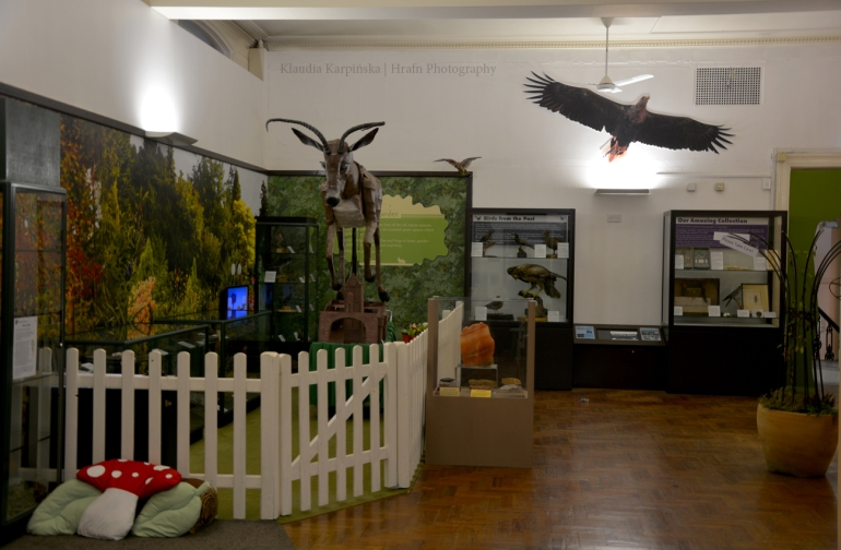 Exhibition on natural history
