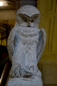 Statue of owl