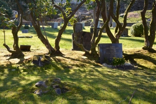 Møllendal gravplass (III)