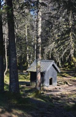 Troll Cabin