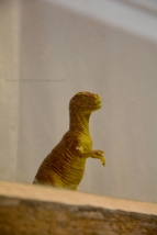 Lonely Tyrannosaurus rex is looking through window (II)