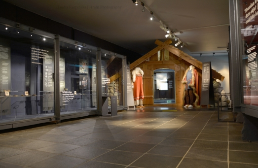 Exhibition on Viking Age