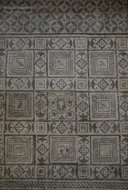 Mosaic from Flavia Solva