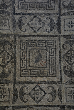 Mosaic from Flavia Solva (II)