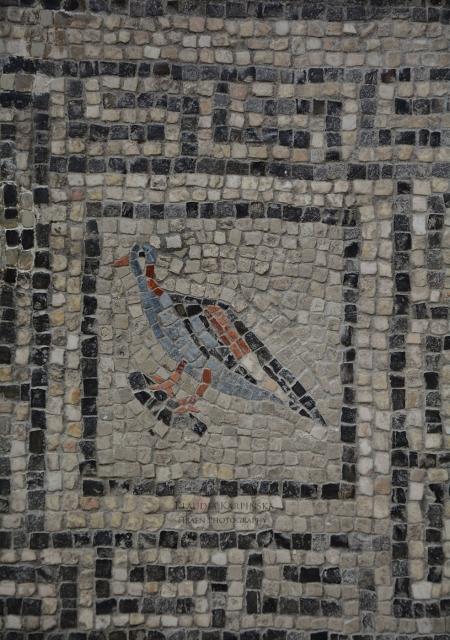 Mosaic from Flavia Solva (VI)