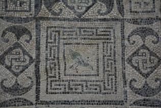Mosaic from Flavia Solva (IV)