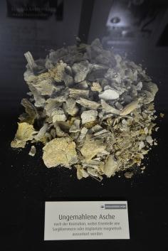 Cremated bones