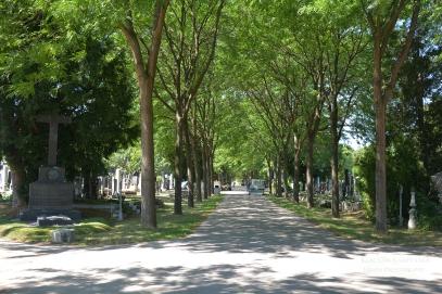 Vienna Central Cemetery (II)