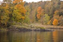Høsten på Bygdøy